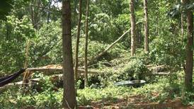 Severe storms topple at least 1,000 trees across Oconee County