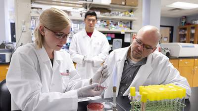 With campus reopening, UGA resumes research